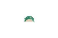QwikStrip Single-Sided Coarse/Green 10 Pack